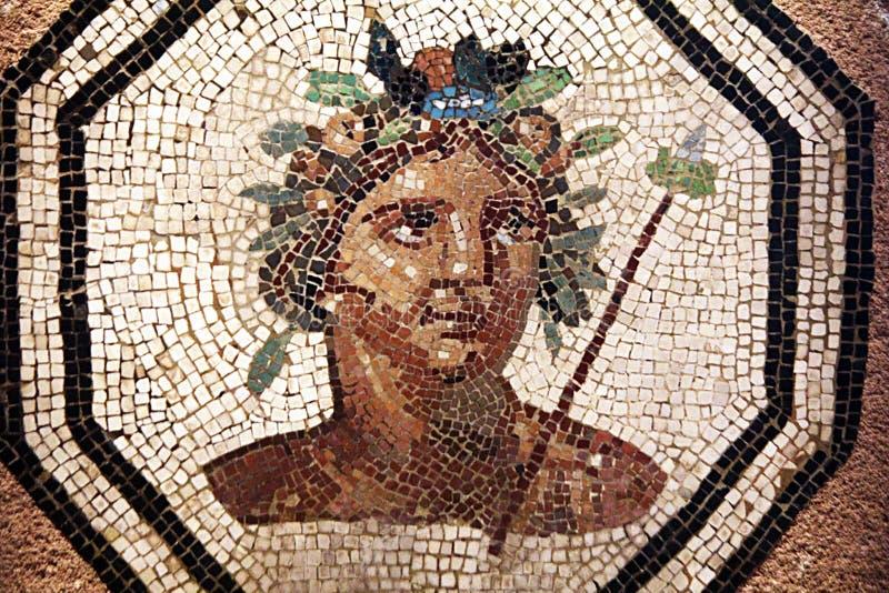 Mosaico di Lione immagine stock