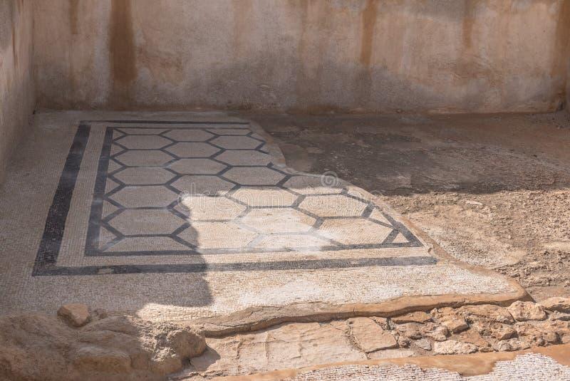 Mosaico do palácio de Masada foto de stock