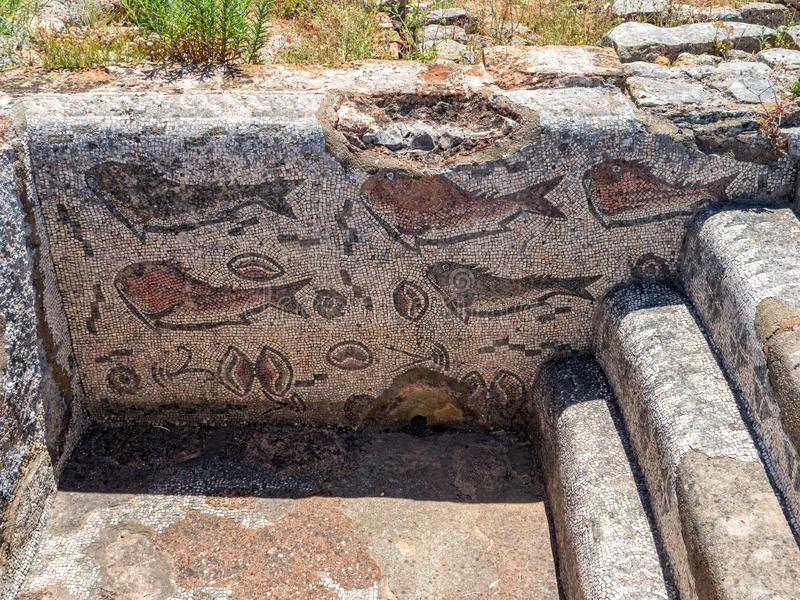 Mosaico dos peixes, Roman Ruins de Milreu, Estoi, o Algarve, Portugal fotografia de stock royalty free
