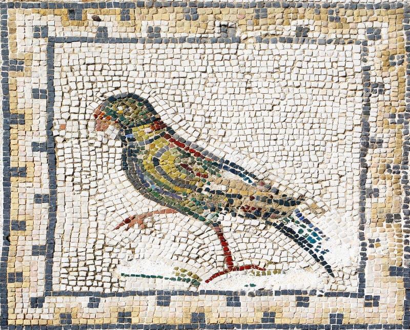 Mosaico romano antico che rappresenta un pappagallo, Sevilla immagini stock