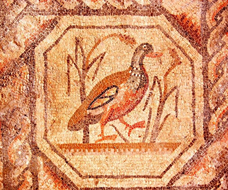 Mosaico romano de un pato que recorre imagen de archivo