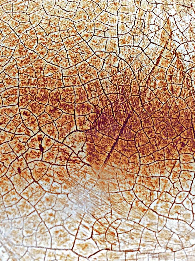 Mosaico terroso foto de archivo