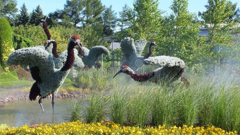 MOSAICULTURES国际性组织2013年,蒙特利尔植物园,蒙特利尔,上海,中国加入:一个真实的故事-红色被加冠的起重机 库存图片