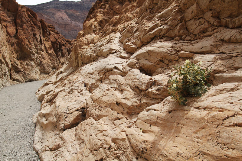 Mosaikschlucht, Death Valley stockfotografie