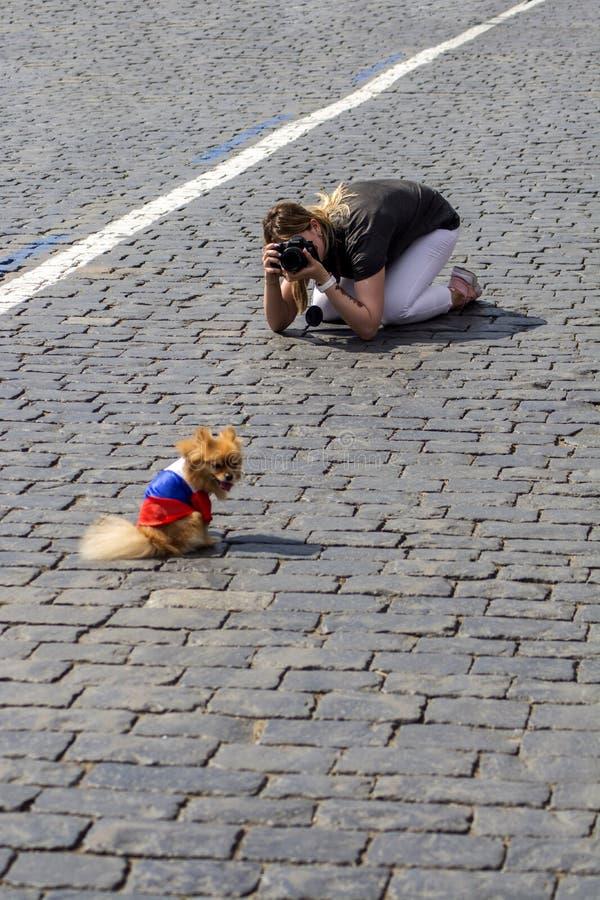 moscú Rusia 27 de junio de 2018 El fotógrafo de la muchacha que se sienta en el cuadrado toma una foto de su perro Perro envuelto fotografía de archivo libre de regalías