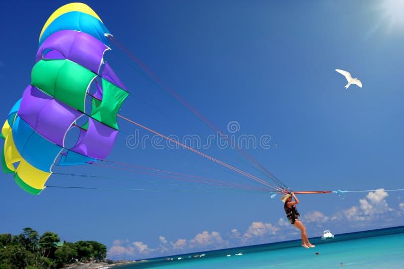 Mosca ao mar, ao sol & ao divertimento tropicais. fotos de stock royalty free