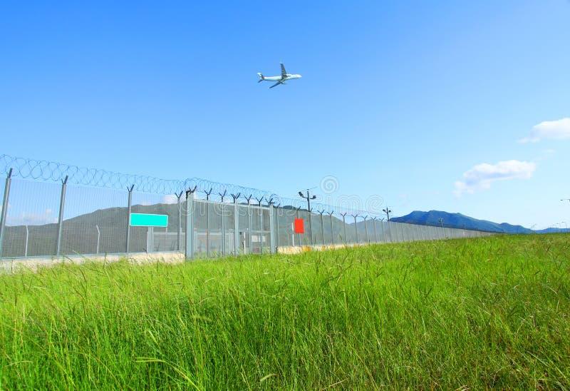 Mosca dell'aeroplano sopra le erbe verdi fotografia stock