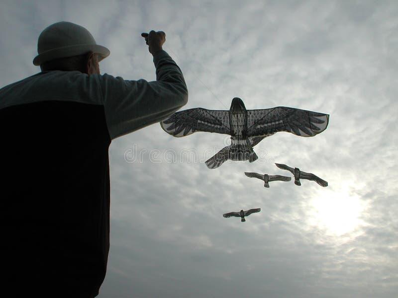 Download Mosca Do Homem Idoso Um Papagaio Imagem de Stock - Imagem de homem, relaxe: 543645