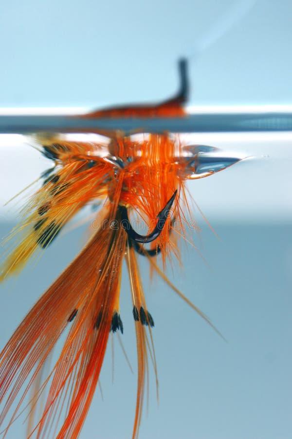 Download Mosca en agua foto de archivo. Imagen de anaranjado, pesca - 175500