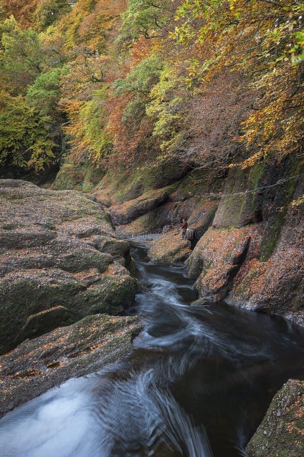 Mosca-Fisher en la garganta del norte del río de Esk en Glen Esk en Escocia imagenes de archivo