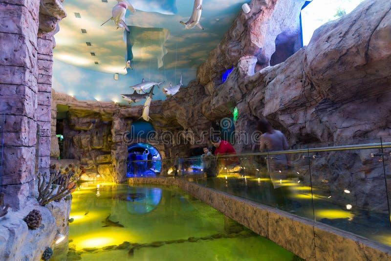 Mosca, Russia - 10 dicembre 2016 Oceanarium interno della città del croco in Krasnogorsk immagine stock libera da diritti