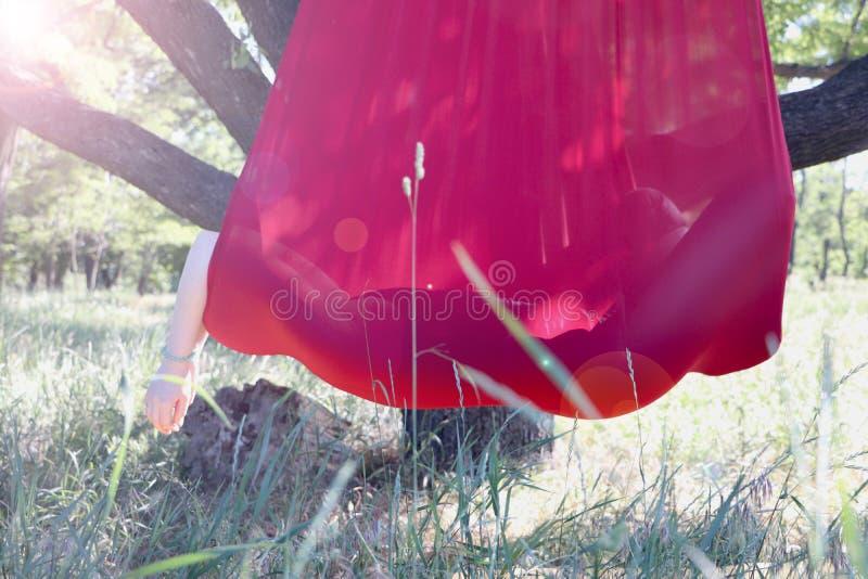 Mosca-yoga practicante de la muchacha hermosa en el árbol Yoga avanzada fotos de archivo