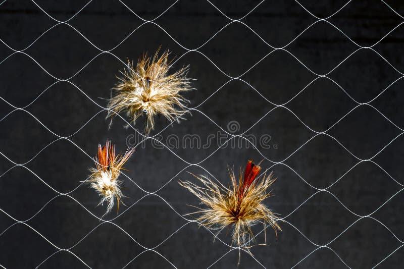 Moscas artificiais na Web sintética no fundo escuro O conceito da similaridade da atração real da pesca do inseto fotos de stock