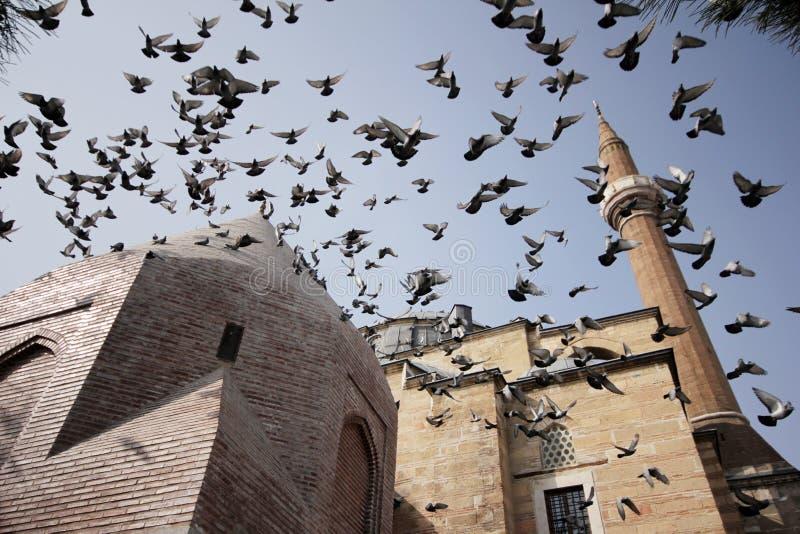 Moschea di ?erafettin, Konya fotografie stock
