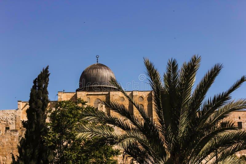 Moschea di Al-Aqsa a Gerusalemme dietro le palme fotografia stock