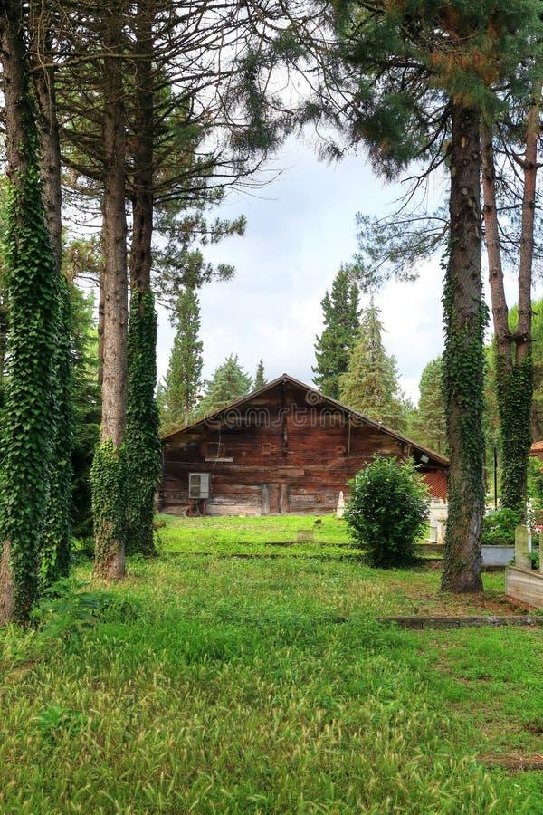 Moschea di legno 'Civisiz' a Samsun, Turchia fotografia stock libera da diritti