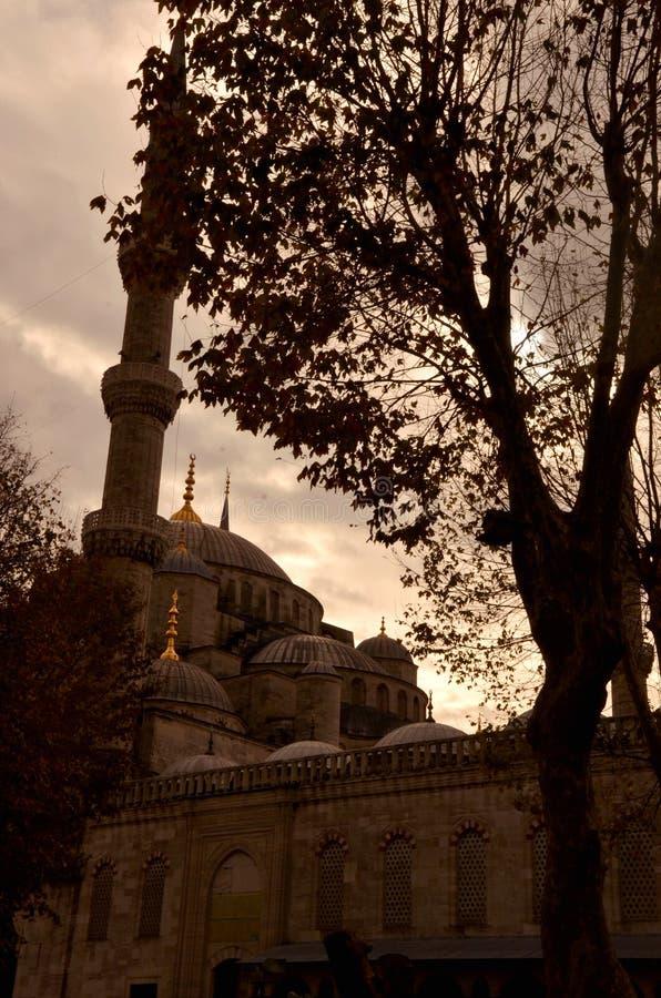 moschea di Solimano IL Magnifico image stock