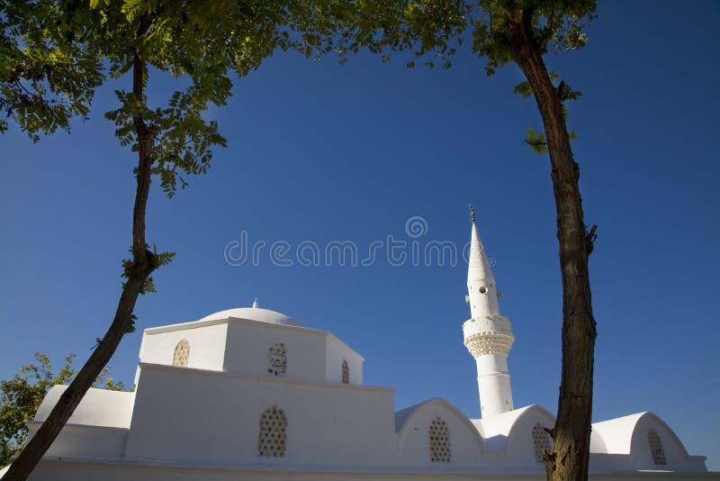 Moschea turca fotografie stock