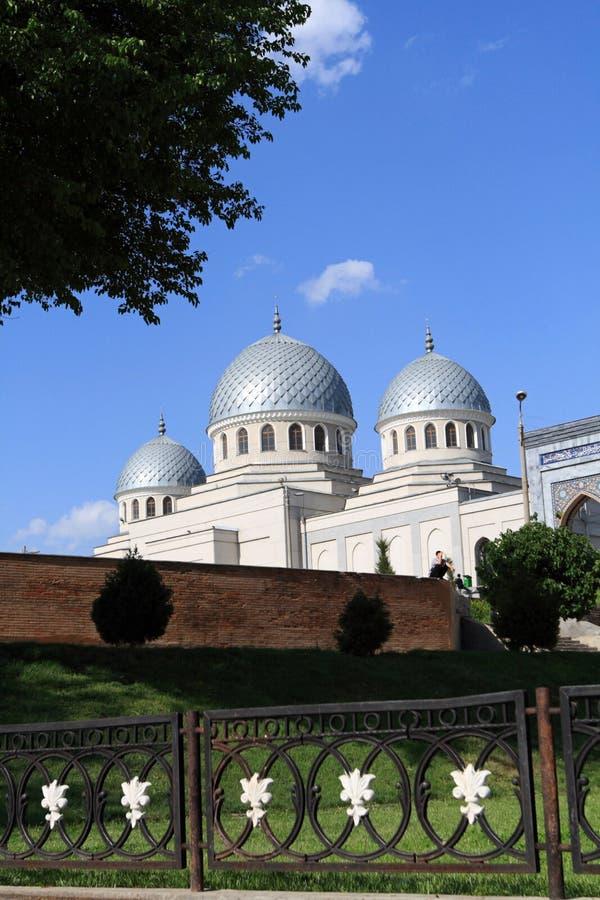 Moschee hinter dem Zerreiben stockfotografie
