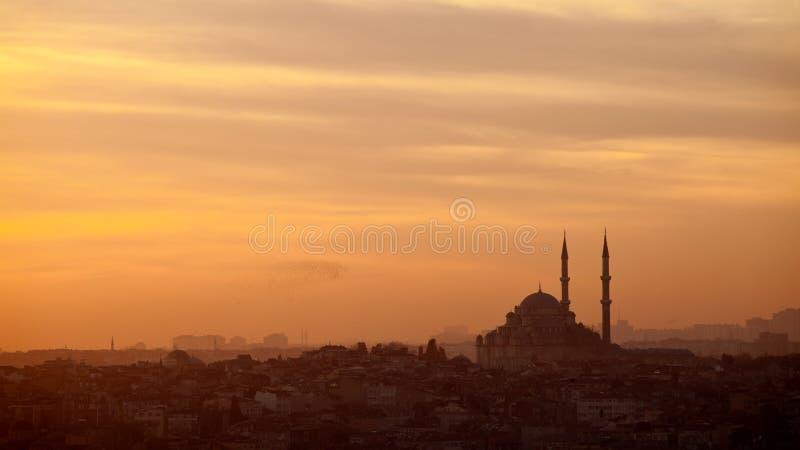 Moschee in Instalbul die Türkei stockbild