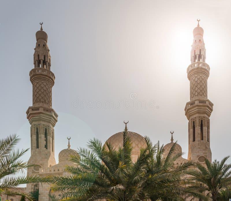 Moschee mit Palme in Vereinigte Arabische Emirate, stockfoto