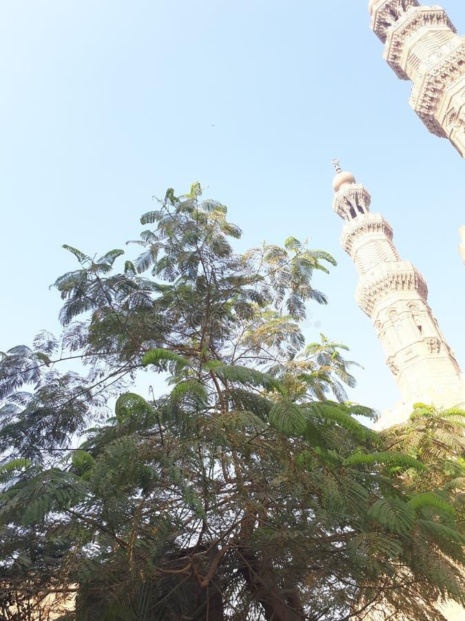 Moschee und Blätter lizenzfreie stockfotos