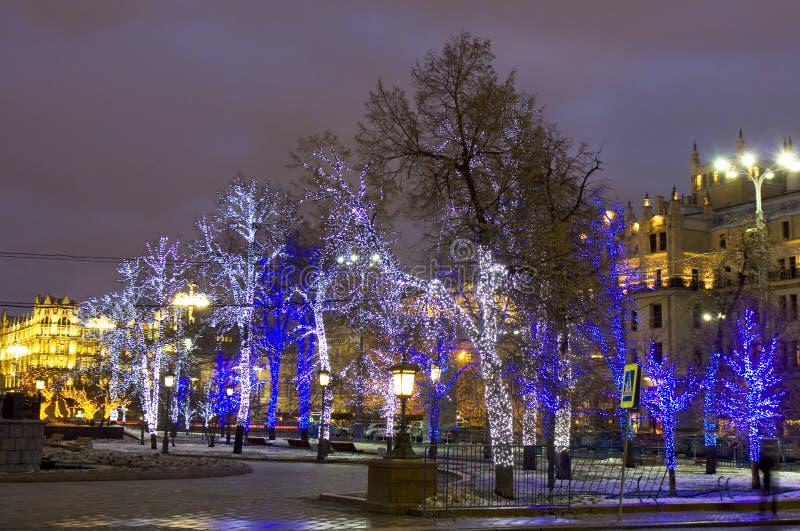 Moscou, arbres dans l'illumination de Noël photos stock