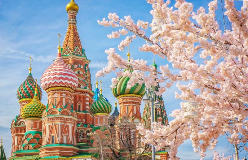 Moscou et St Basil Cathedral à la journée de printemps par l'arbre de floraison photo stock