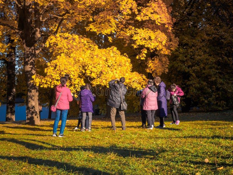 Moscou, Rússia - 11 de outubro de 2018: Os turistas chineses andam o parque do outono Os povos asiáticos tomam imagens no fundo d fotografia de stock
