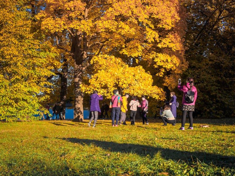 Moscou, Rússia - 11 de outubro de 2018: Os turistas chineses andam o parque do outono Os povos asiáticos tomam imagens no fundo d imagens de stock