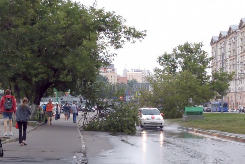 moscow Höst 2018 Efterdyning av en orkan Bilar cirklade stupade träd royaltyfria foton