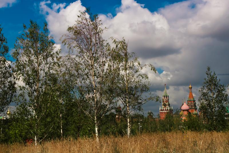 Moscow Kremlin next to birches and yellow meadow grass, nature o. F Russia. Russia Moscow stock images