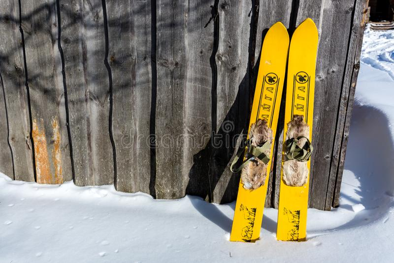 Moscow region, Russia - February 24, 2018: Pair of yellow old fashioned wooden skis standing near old house on white snow royalty free stock image