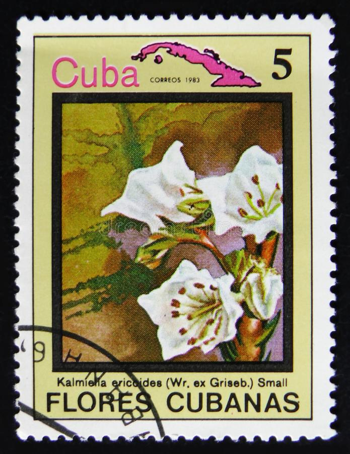Cuba postage stamp shows Kalmiella aricoides and map of Cuba, serie Flowers of Cuba, circa 1983 royalty free stock image
