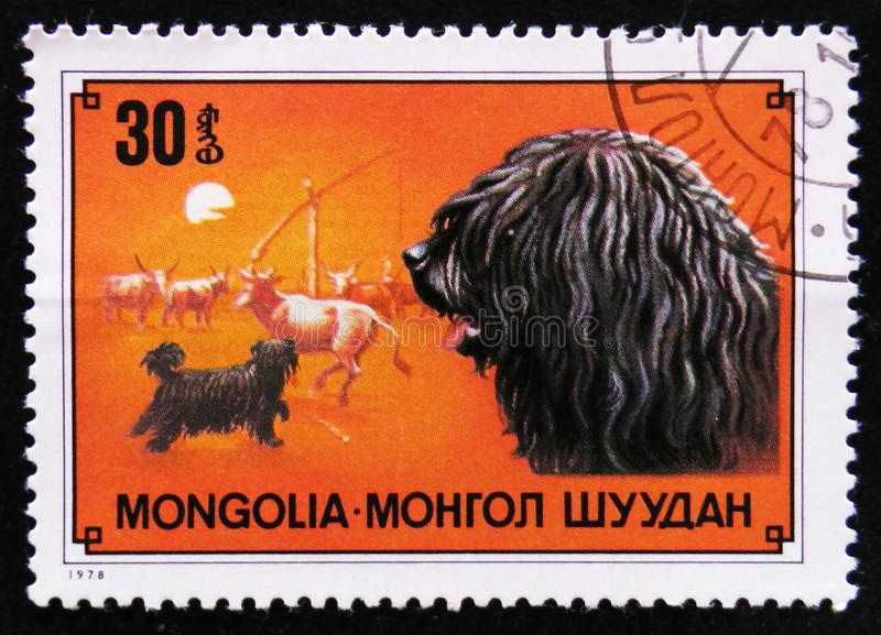 Dog breed Puli, Cow shepherd dog, circa 1978. MOSCOW, RUSSIA - APRIL 2, 2017: A post stamp printed in Mongolia shows dog breed Puli, Cow shepherd dog, circa 1978 royalty free stock images