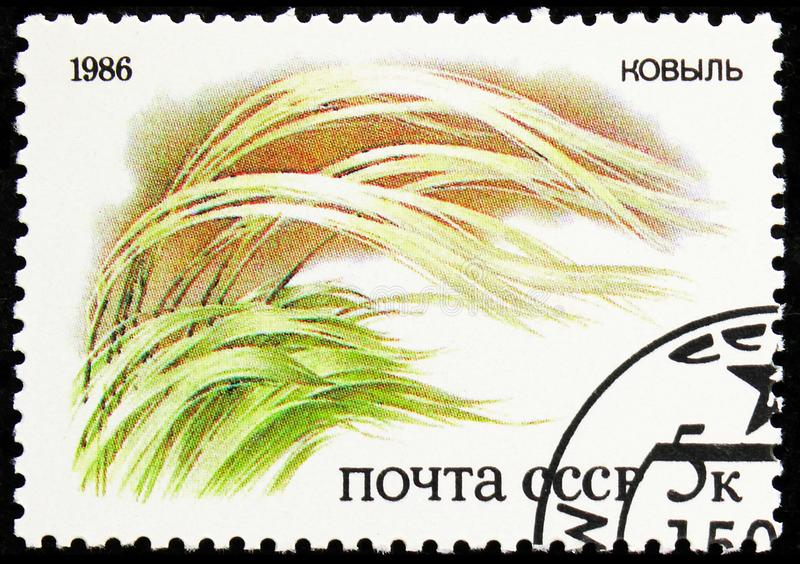 Grass, Plants of Russian Steppes serie, circa 1986. MOSCOW, RUSSIA - AUGUST 31, 2019: Postage stamp printed in Soviet Union (Russia) shows Grass, Plants of royalty free stock photography