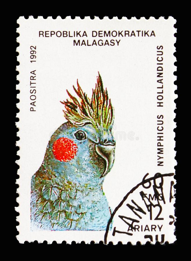 Cockatiel (Nymphicus hollandicus), Parrots serie, circa 1993. MOSCOW, RUSSIA - AUGUST 18, 2018: A stamp printed in Madagascar shows Cockatiel (Nymphicus royalty free stock image