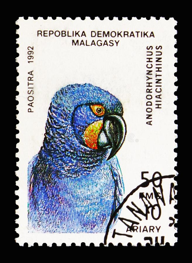 Hyazinth Macaw (Anodorhynchus hyacinthinus), Parrots serie, circa 1993. MOSCOW, RUSSIA - AUGUST 18, 2018: A stamp printed in Madagascar shows Hyazinth Macaw ( royalty free stock images