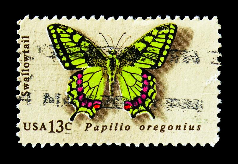 Oregon Swallowtail (Papilio oregonius), Butterfly Issue serie, circa 1977. MOSCOW, RUSSIA - AUGUST 18, 2018: A stamp printed in USA shows Oregon Swallowtail ( stock photos