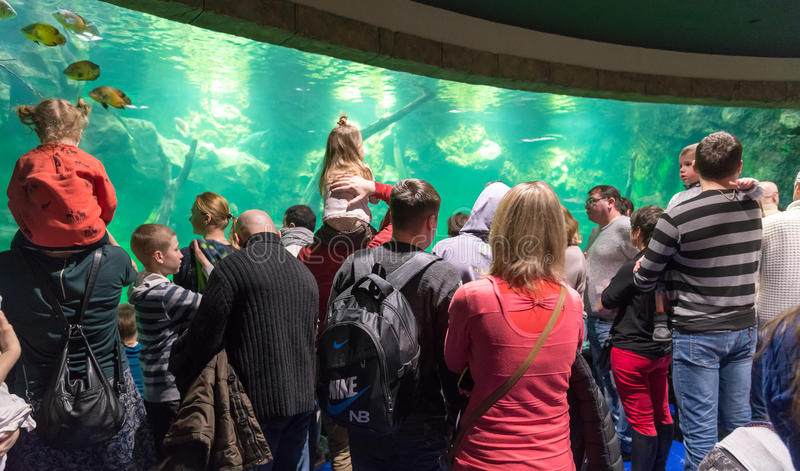 Moscow, Russia - December 10.2016. Many people in Oceanarium in Krasnogorsk. the opening day stock photography