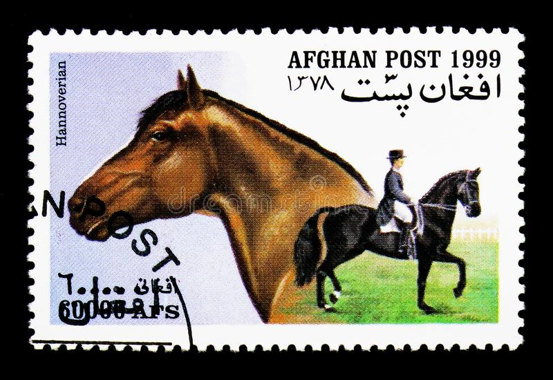 Hannoverian (Equus ferus caballus), Horses serie, circa 1999. MOSCOW, RUSSIA - DECEMBER 21, 2017: A stamp printed in Afghanistan shows Hannoverian (Equus ferus stock photo