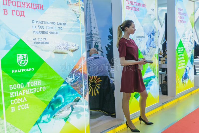 Agro exhibition Golden autumn, Russian stock photos