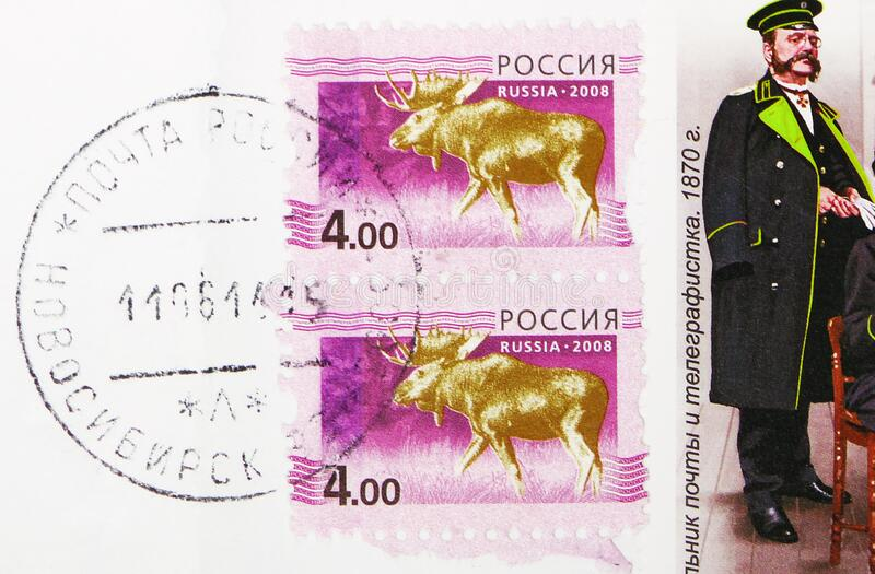 Postage stamp printed in Russia with stamp of Novosibirsk town Post office shows Moose Alces alces, 5th Definitive Issue of. MOSCOW, RUSSIA - FEBRUARY 25, 2020 stock photos