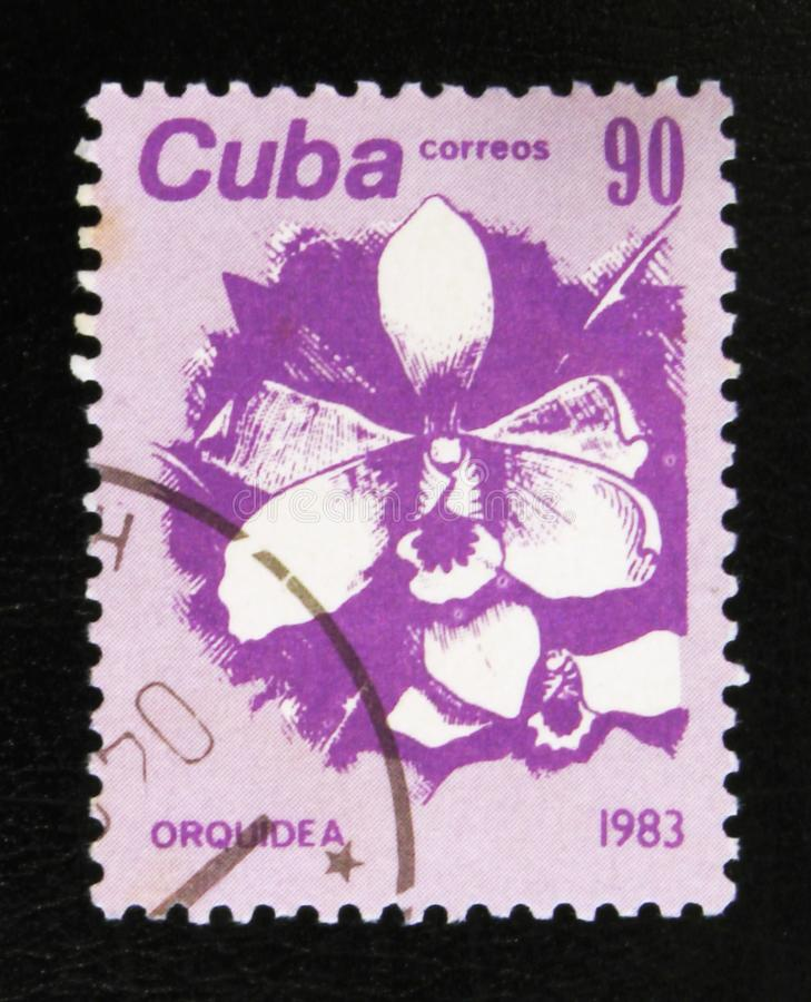MOSCOW, RUSSIA - JULY 15, 2017: A stamp printed in Cuba shows Or. Chid Flower, circa 1983 royalty free stock photos
