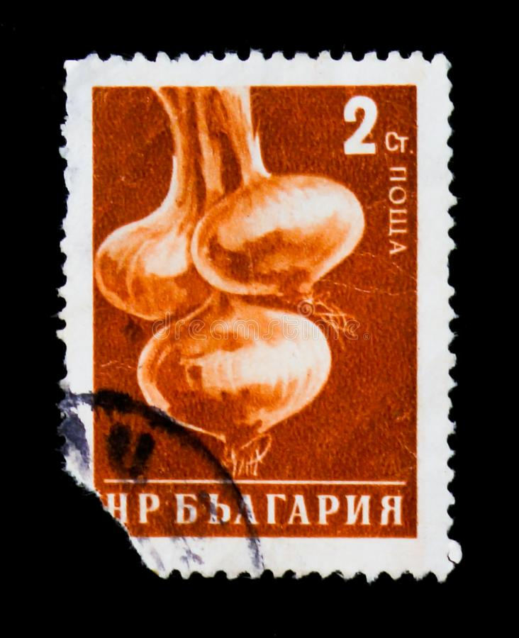 Onion, Definitives: Vegetables, circa 1958. MOSCOW, RUSSIA - JUNE 26, 2017: A stamp printed in Bulgaria show onion, Definitives: Vegetables, circa 1958 royalty free stock photo
