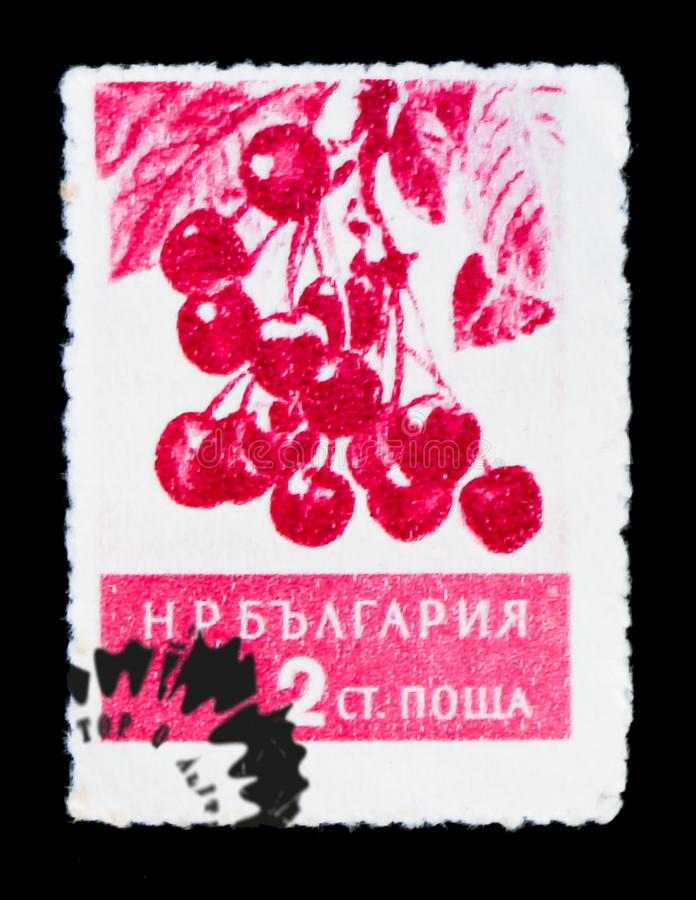 Branch with berries, Prunus avium, Fruits serie, circa 1956. MOSCOW, RUSSIA - JUNE 26, 2017: A stamp printed in Bulgaria shows branch with berries, Prunus avium stock photo