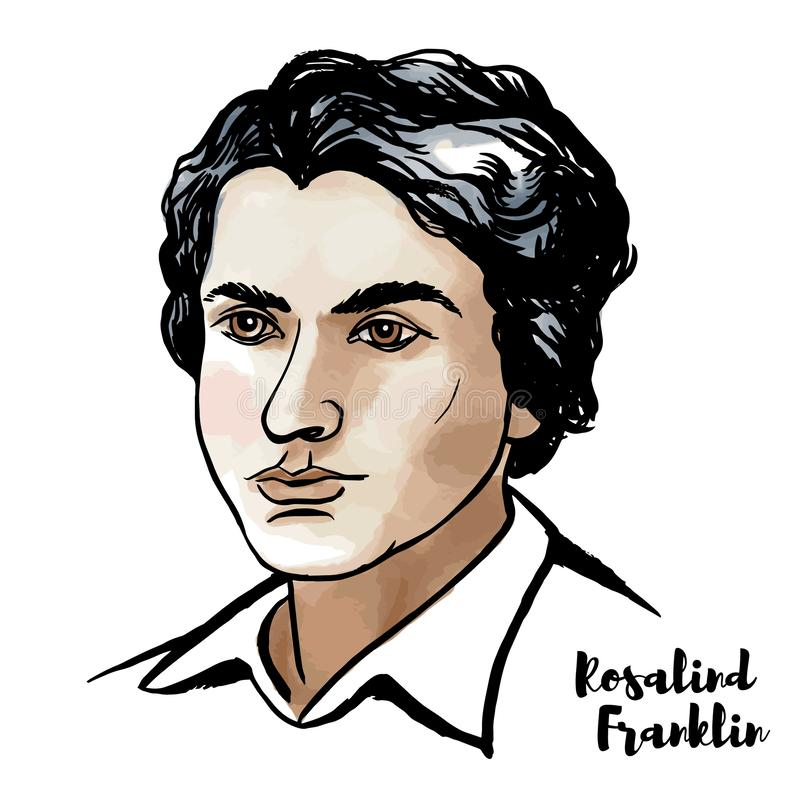 Rosalind Franklin Portrait. MOSCOW, RUSSIA - MARCH 13, 2018: Rosalind Franklin watercolor vector portrait with ink contours. English chemist and X-ray
