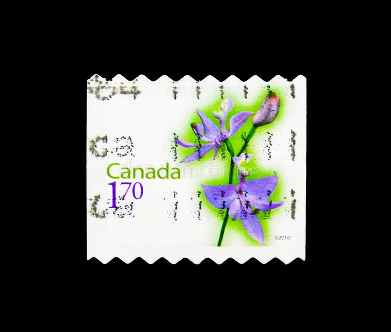 Calopogon tuberosus - Grass Pink, Flower Definitives (4th series. MOSCOW, RUSSIA - MARCH 18, 2018: A stamp printed in Canada shows Calopogon tuberosus royalty free stock photography