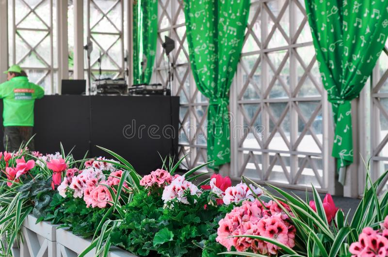 Moscow, Russia - May, 05, 19. Brigt beautiful flowers near the stage on Tverskaya square. The Moscow spring festival. Moscow, Russia - May, 05, 19. Brigt stock images