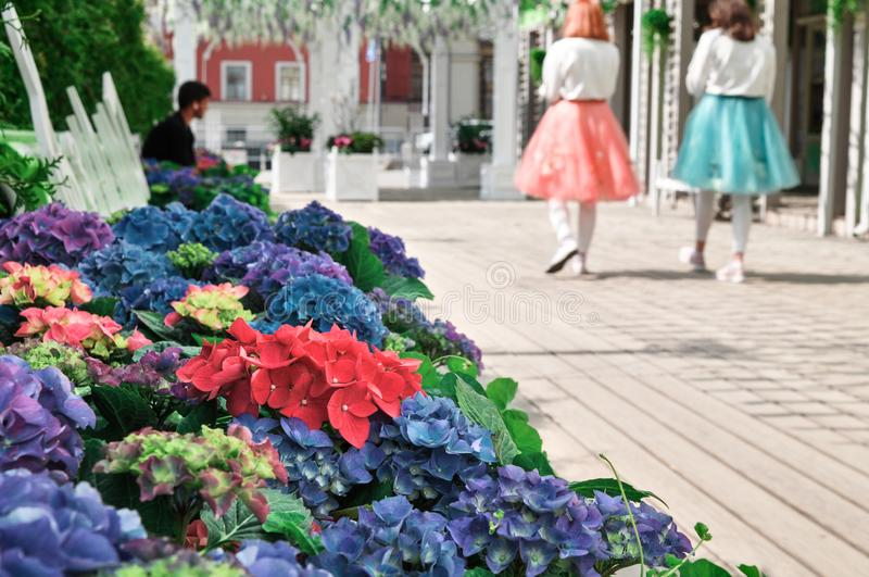 Moscow, Russia - May, 05, 19. Music bench, beautiful flowers and pink,green, white ribbons fluttering in the wind on. Tverskaya square. Moscow spring from stock image